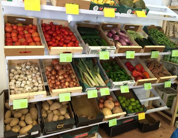 frutas-verduras-ecologicas